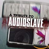 Various Artists: Tribute To Audioslave (Audio CD)