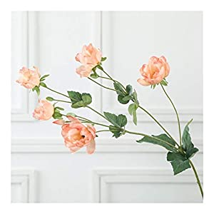 JiaQinHe Remains Simulation Anemone Grass Pattern Rose Silk Artificial Flower for for Wedding Decoration Plants Wall Garden Home Decor Never (Color : Coral)