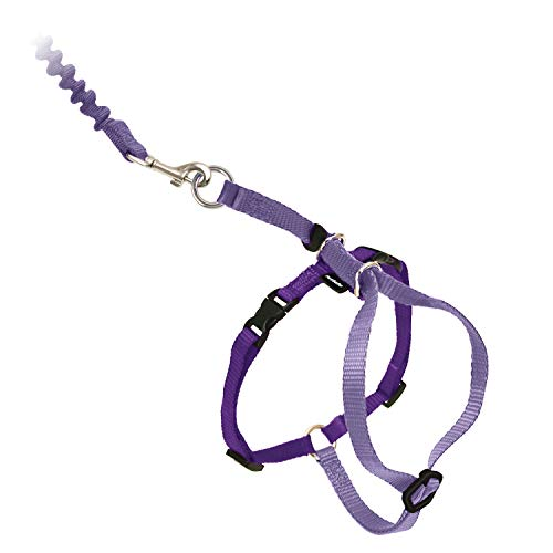 PetSafe Come With Me Kitty Harness and Bungee Cat Leash, Medium, Lilac