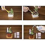 Vaso da fiori 150 Pz 10,72 Pollici Plastica Piantine di Fiori Forniture Fioriera Vaso Vaso/Vasi Contenitori Sementi Vasi di Piantare Vasi