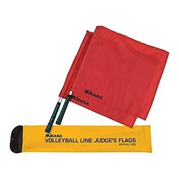 volleyball line judge