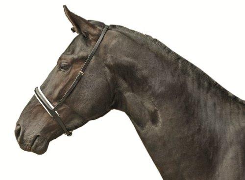 HKM Reithalfter für Kandare, weiß unterlegt, schwarz/weiß, Pony