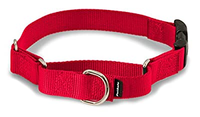 """PetSafe Martingale Collar with Quick Snap Buckle, 1"""" Large, Red by Toys & Behavior"""
