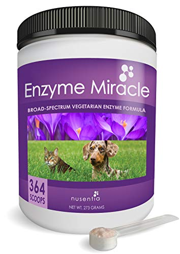 NUSENTIA Enzymes for Dogs & Cats - Enzyme Miracle - Systemic & Digestive Enzyme Formula - Powder - 364 Servings - Vegetarian