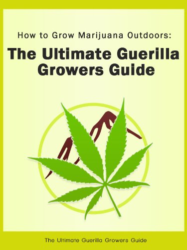 How to Grow Marijuana Outdoors: The Ultimate Guerilla Growers Guide
