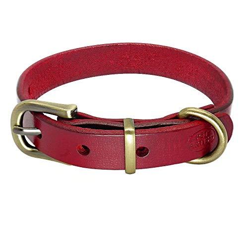 PET ARTIST Hundehalsband aus echtem Leder, für kleine und mittelgroße Hunde, Welpen, weiches Lederhalsband für Chihuahua, Yorkie, Pudel, Französische Bulldogge, Schwarz/Braun/Blau/Rot/Hot Pink