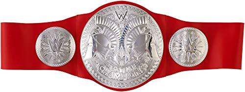 WWE RAW Tag Team Championship Title