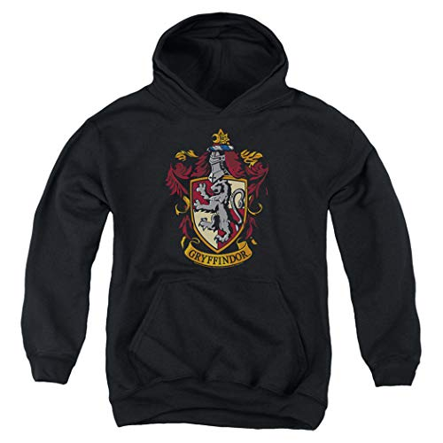 Popfunk Harry Potter Gryffindor Logo Pull-Over Hoodie Sweatshirt for Boys & Stickers (Large)