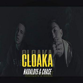 Cloaka