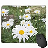 Flores Margaritas En Primavera Mini Gaming Mouse Pad Fast and Accurate Control for Gaming and Office