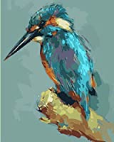 DIY 数字 油絵 塗り絵 キット 大人 子ども 塗り絵 彩画キツツキ デジタル油絵 手塗り 数字キットによる絵画 絵かき インテリア 壁飾り ホームデコレーション 40x50cm(額縁なし)