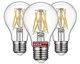 12V 24V DC(Nein Home 230V direkt) 3er Leuchten LEESANRAN A60 LED Glühbirne, E27 6W Edison Retro Low Voltage Bulb Lampe, 2700k warmweiß Glühlampe für RV/Camping/Wohnwagen/Gartenhaus nicht dimmbar