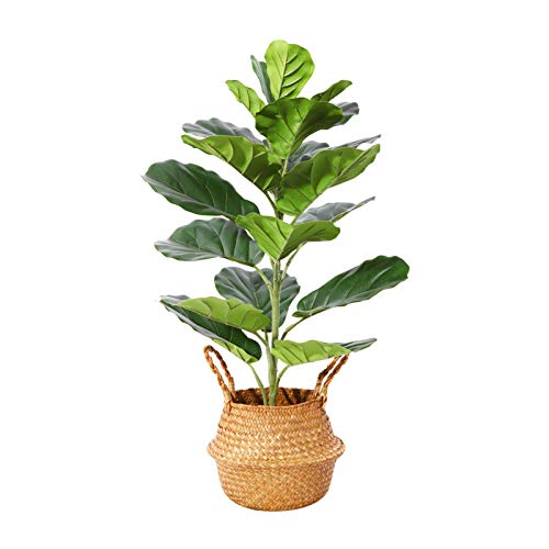 Ferrgoal Plantas Artificiales Faux Ficus Lyrata Artificial Palma Plantas Altura 76cm para Hogar Baño Oficina Jardín Boda Partido Planta Falsa Decoración,incluir Cesta Mimbre(1PACK)