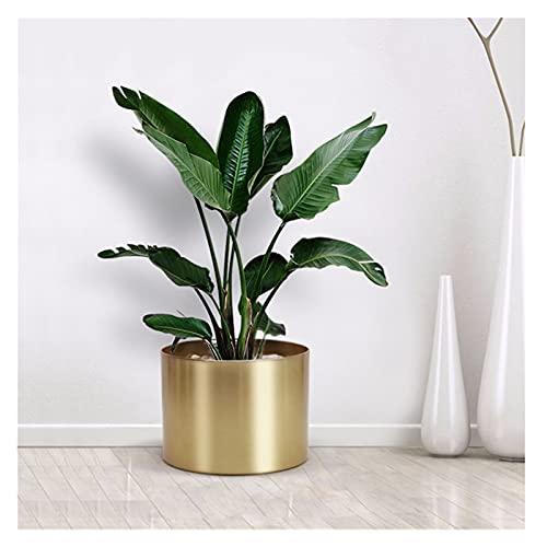 YANGYANG Allenzhang Creative Metal Flower Pot Jardinería Pot Suculents Jarrón Hierro Flor Soporte Decoración del hogar 2019 (Color : Silver, Size : 20 x 15cm)