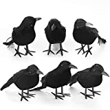 Halloween Crows - Realistic Scary Black Bird Decorations in 3 Sizes - Creepy Artificial Indoor & Outdoor Decor for Home, Room, Yard, Garden, School - Lifelike Feathered Raven Set - Pack of 6
