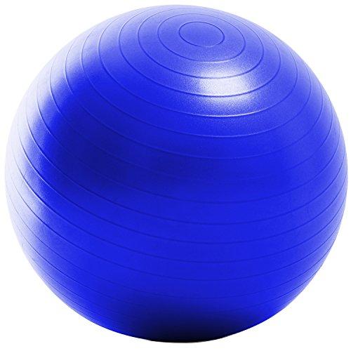 La-VIE(ラヴィ) バランスボール ノンバーストジムボール65cm コバルト フットポンプ 紙メジャー付き 3B-3130
