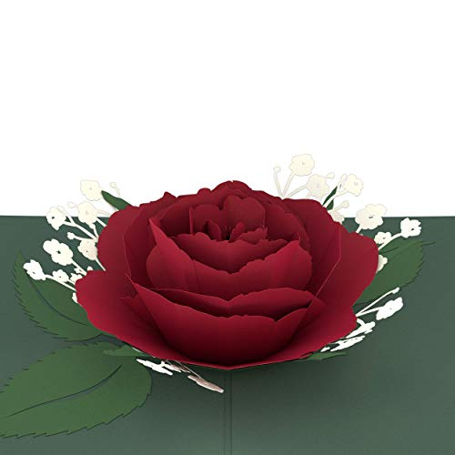 Lovepop Red Rose Bloom Pop Up Card - 3D Card, Valentine's Day Pop Up Card, Valentine's Day Cards, Anniversay Card, 3D Valentine Cards, Romance Card, Card for Wife