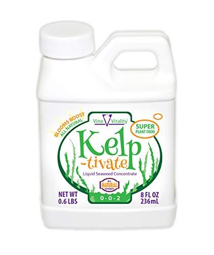 Kelp-tivate Liquid Seaweed Concentrate, Super Plant Food, 8oz.