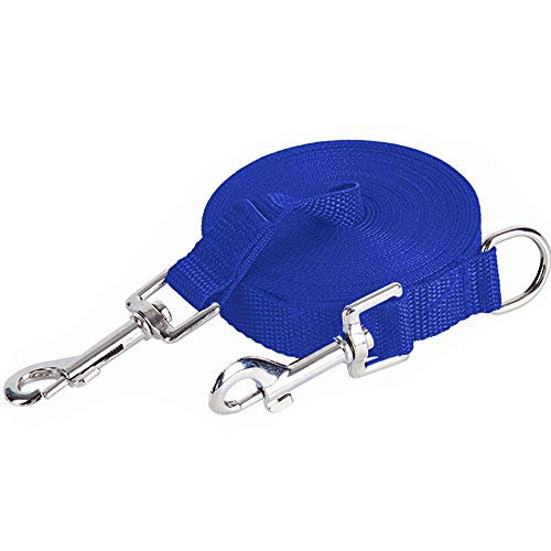 Upgraded 32FT/10M Double Clip Dog Training Lead - Long Dog Leash for Large, Medium and Small Dogs - Great for Training, Play, Camping, or Backyard (Blue)