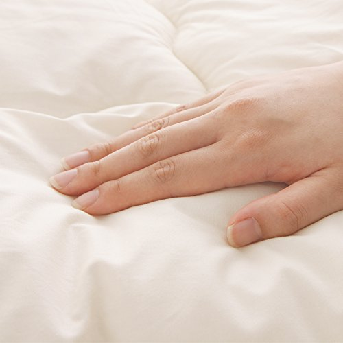 アイリスプラザ掛け布団シングル保温性吸収性あったかふわふわ日本製フランス産プレミアムウール100%