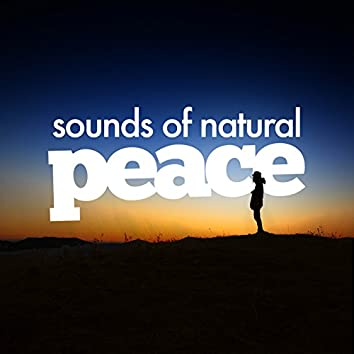 Sounds of Natural Peace