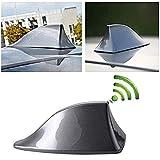 Heart Horse Antenna a pinna di squalo Antenna universale per auto Antenna Segnale radio FM con base adesiva Impermeabile (grigio)