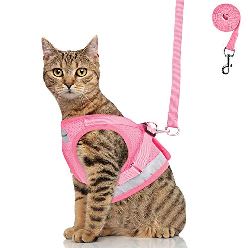 GAUTERF Cat Harnesses and Puppy Harness with Leashes Set, Escape Proof Cat Harness, Adjustable Reflective Soft Mesh Corduroy Vest Fit Puppy Kitten Rabbit Ferrets's Outdoor Harness