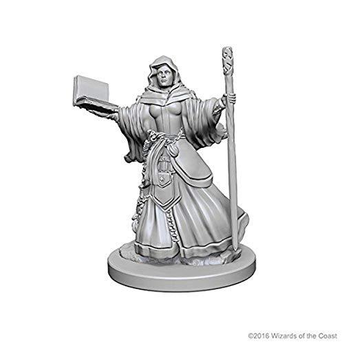 D&d Nolzur?s Marvelous Unpainted Minis: Human Female Wizard
