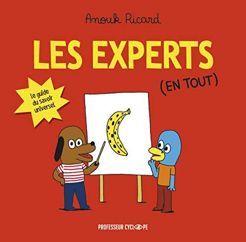Les Experts en tout