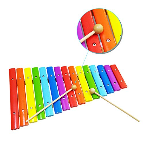 WEY&FLY Xylophone for Kids, Musical Toy with Child Safe...