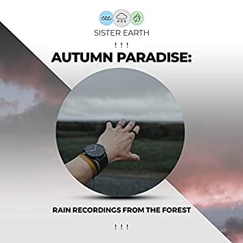 ! ! ! Autumn Paradise: Rain Recordings from the Forest ! ! !