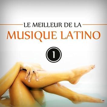 Le meilleur de la musique latino, Vol. 1 (feat. Matas, Ses Gipsies) [Best of Latin Music 20 Hits]