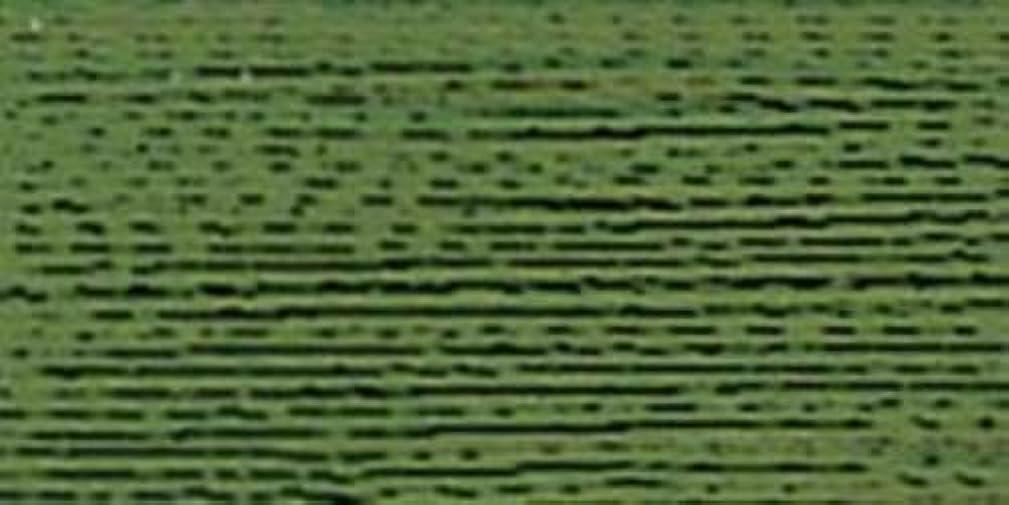 Robison-Anton Rayon Super Strength Thread, 1100-Yard, Green