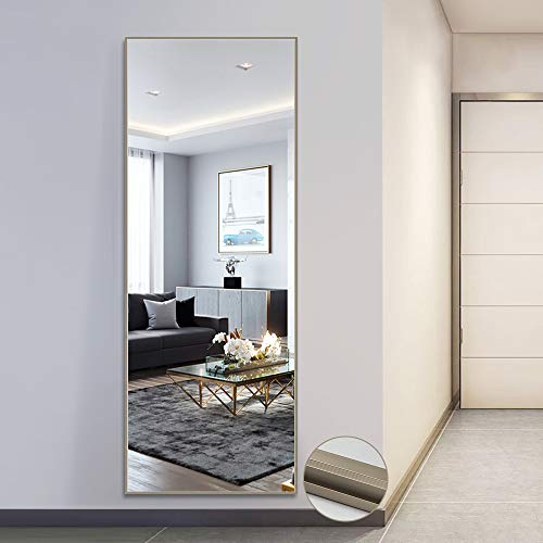 """Full Length Mirror Standing Hanging or Leaning Against Wall, Large Bedroom Mirror Floor Mirror Dressing Mirror Wall-Mounted Mirror, Aluminum Alloy Thin Frame, Matte Champagne Color, 65""""x22"""""""