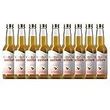 Te Kombucha bebida energetica kombucha scoby probióticos intestinales sin azucar añadido ecológico fermentado / botellas de kombucha Onflow (Manzana - Canela, PACK DE 9 BOTELLAS)
