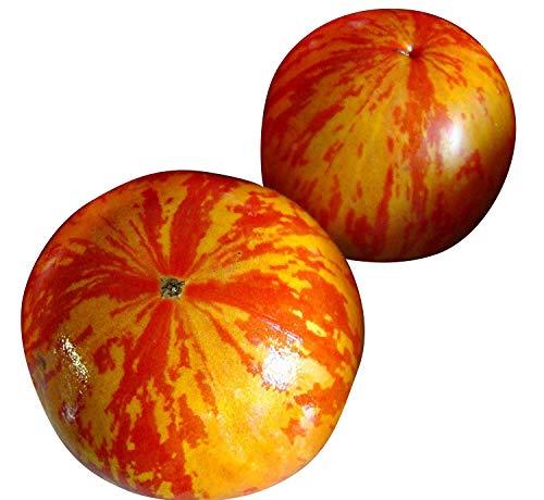 Tomate -Red Zebra (Improved Strain) 10 Samen -Neu-