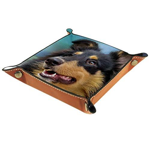 FCZ Bandeja organizadora de cuero con borde alemán de Border Terrier para mesita de noche de escritorio, caja organizadora para joyas, llaves, monedero, caramelos, 20 x 20 cm