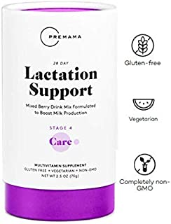 PREMAMA Lactation and Breastfeeding Supplement - Mixed Berry Drink Mix with Fenugreek and Blessed Thistle - Vegetarian, Non GMO, Gluten Free - 28 Packets