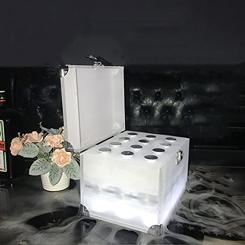 Caja De Vino Luminosa LED, Caja De Cóctel Luminosa KTV De Noche De Bar, Caja De Vino para Barman, Caja De Vino con Botella De Aluminio,Type A