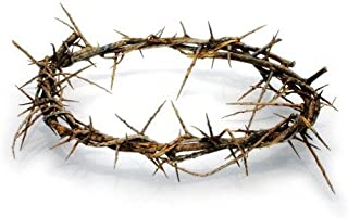 Holy Land Imports Passion of Christ Crown of Thorns/Authentic Crown of Thorns Comes in Gift Box with Description