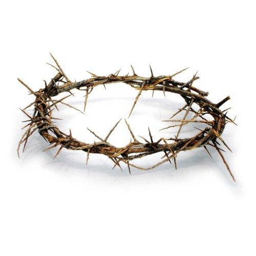 Holy Land Imports Corona de Espinas pasión de Cristo, en Caja de Regalo con descripción (podría no Estar en español)