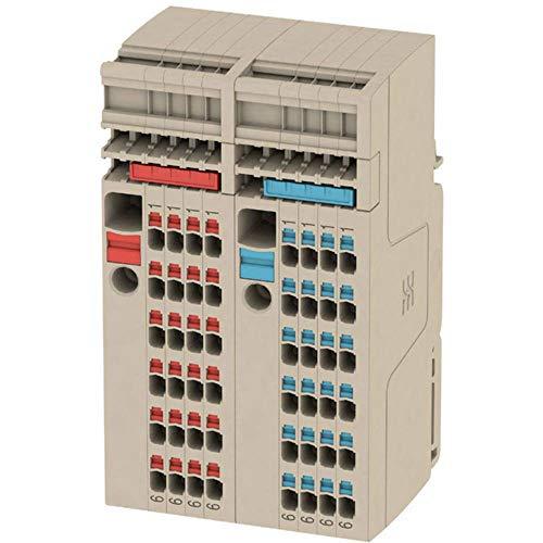 Verteiler-Reihenklemme Set AAP13 6/1.5/24C 2506380000 Beige Weidmüller 1 St.