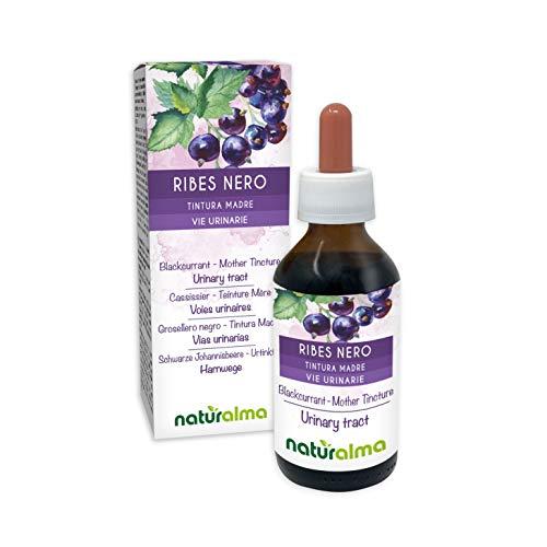 RIBES NERO (Ribes nigrum) foglie e frutti Tintura Madre analcoolica NATURALMA | Estratto liquido gocce 100 ml | Integratore alimentare | Vegano