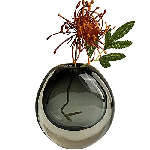 Jarrones Vidrio Decorativos Modernos, Florero Vintage Jarrón Transparente Flores Hidropónicas Para Plantas Hidropónicas De Flores, Oficina o Estante De Mesa,Grey