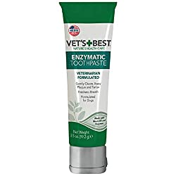 Vet's Best Dental Gel - Best Dog Teeth Cleaning Products