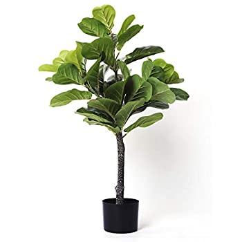 Homelux Theory Fiddle Leaf Fig Tree Artificial Plant Decor   PE Material Low Maintenance   Looks Real & Natural   Home Store Office Any Space Tall Fake Tree Ficus Tree Faux Plant  31.5  1 Stem