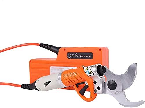 X&Z-XAOY Cizalas eléctricas de poda, cizallas de huerto de árboles frutales, batería...