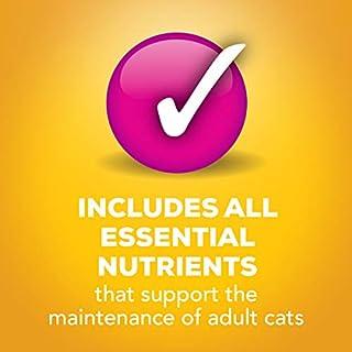 ارخص مكان يبيع Purina Friskies Tasty Treasures Adult Wet Cat Food Variety Pack