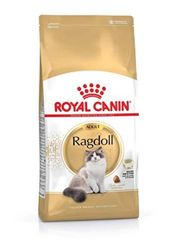ROYAL CANIN Katzenfutter Ragdoll 10 kg, 1er Pack (1 x 10 kg)