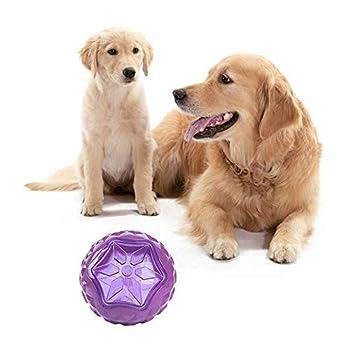 N/A. Pet Dog Vinyle Vocal Bite-résistant Interactif Lumineux Rond Boule Jouet Violet